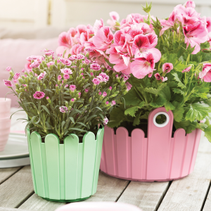 Planters by colour